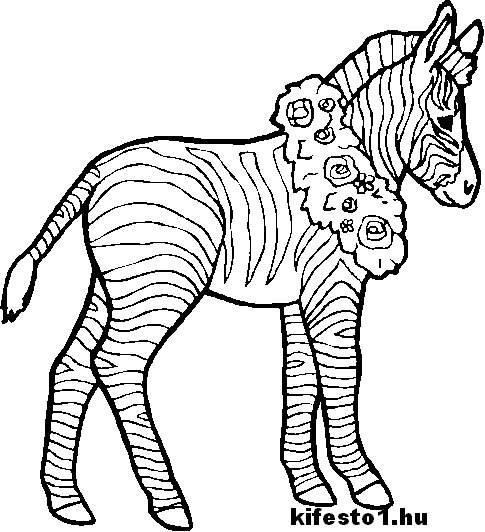 Lovas 40 kifest lovas kifest for Coloring pages of zebra stripes